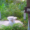 Одинокий унитаз на острове Самуи
