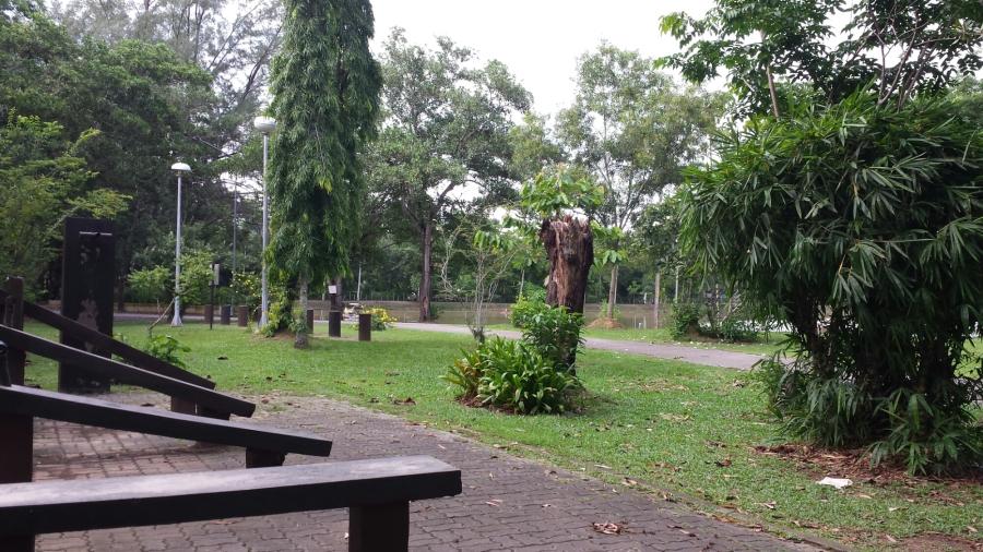 Парк короля Рамы 9