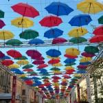 Мероприятия на Аллее зонтиков!